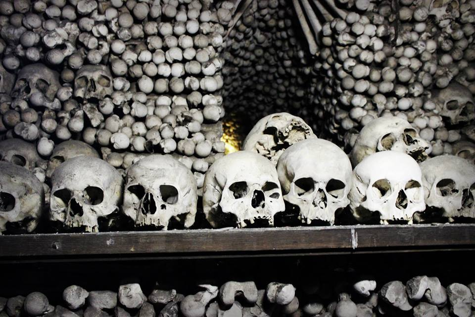 A row of skulls in Kostnice Sedlec Ossuary, Czech Republic