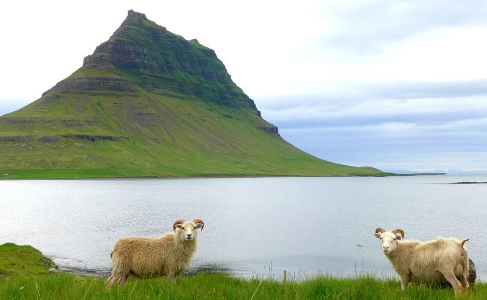 Kirkjufell, Iceland - isn't this the most perfect scenery?