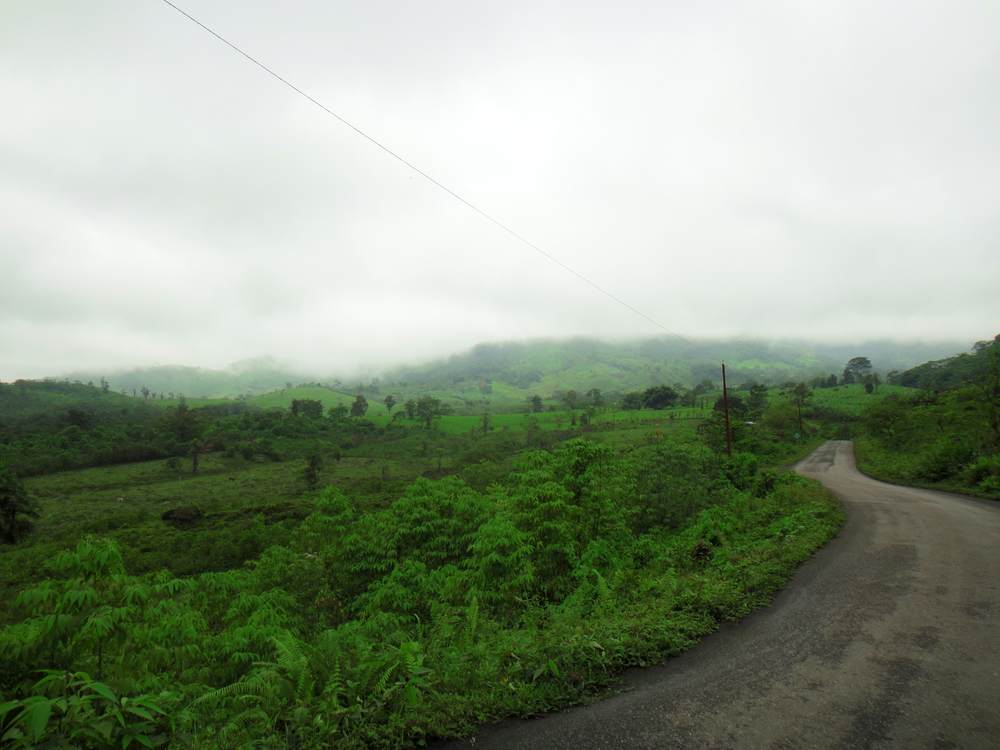 The road trip to Bucay in Ecuador... So much greenery!