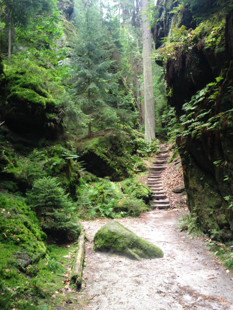 Felsentor at Uttewalder Grund in Saxon Switzerland