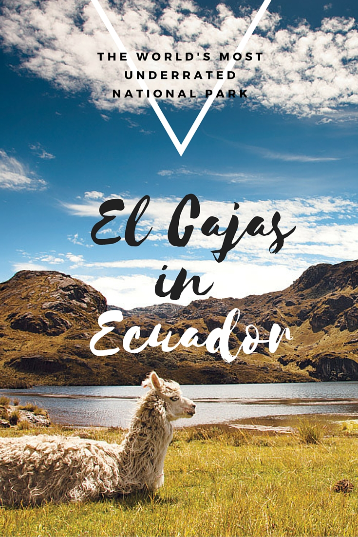 Is El Cajas the most underrated national park in the world?