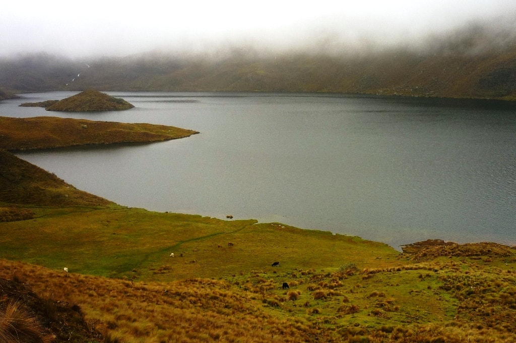 Laguna Luspa in El Cajas National Park in Ecuador. What a gorgeous landscape! So foggy and misty I'm ready to get lost there...