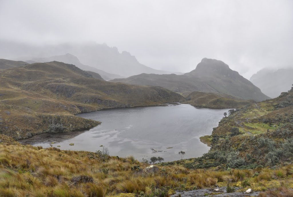 Laguna Patoquinuas in El Cajas National Park. So beautiful!