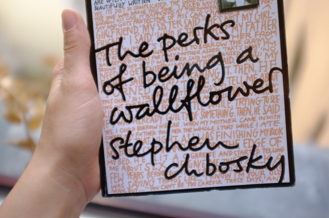 great books to read on a plane -- the perks of being a wallflower review